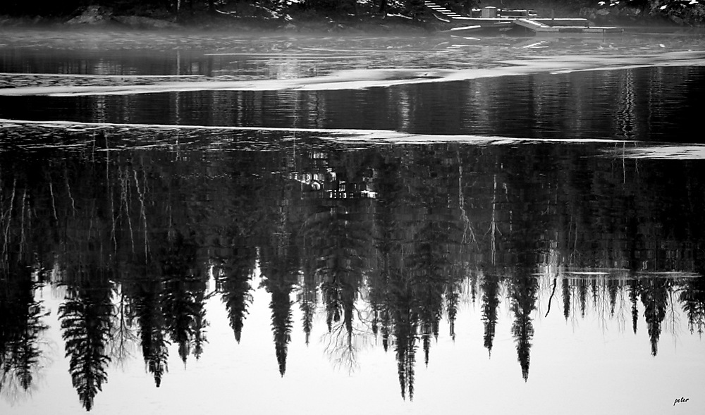 photoblog image Black Ice