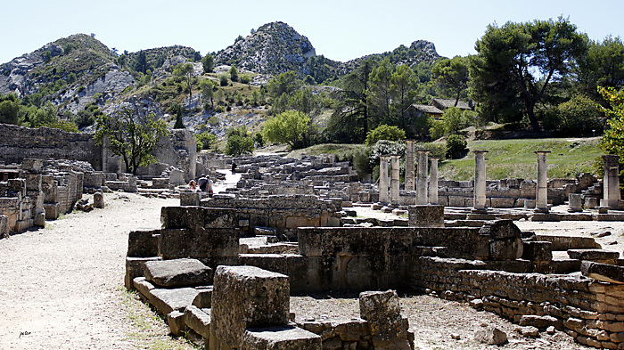 The Streets and  Buildings Discovered  in Glanum